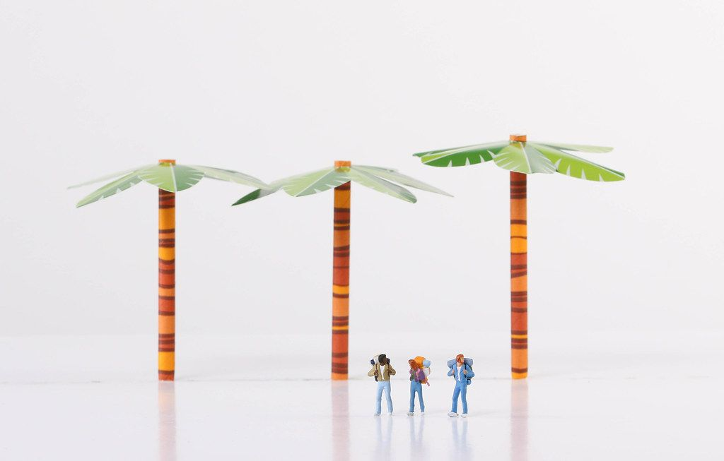 Miniature travelers with trees on white background