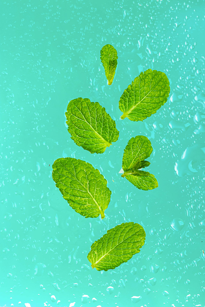 Mint herb leaves with water drops