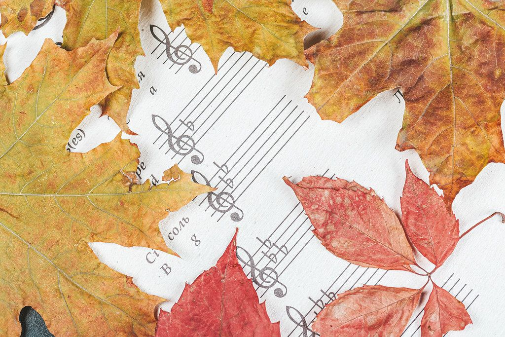 Notebook for notes with autumn colorful leaves