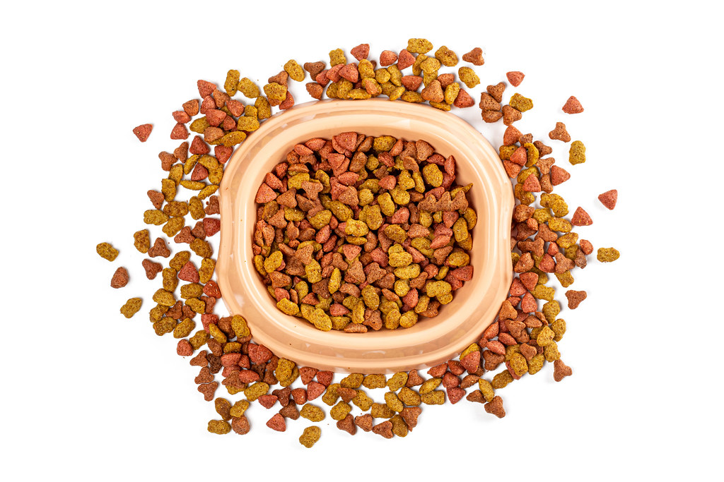 Pet food in bowl and scattered on white background, top view