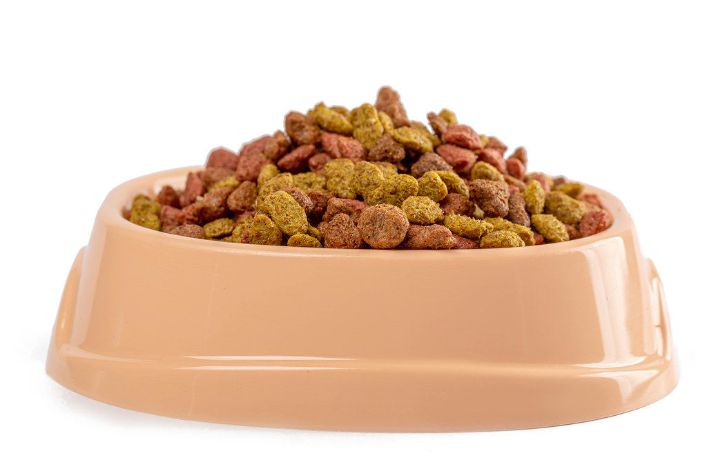 Pet food in bowl on a white background