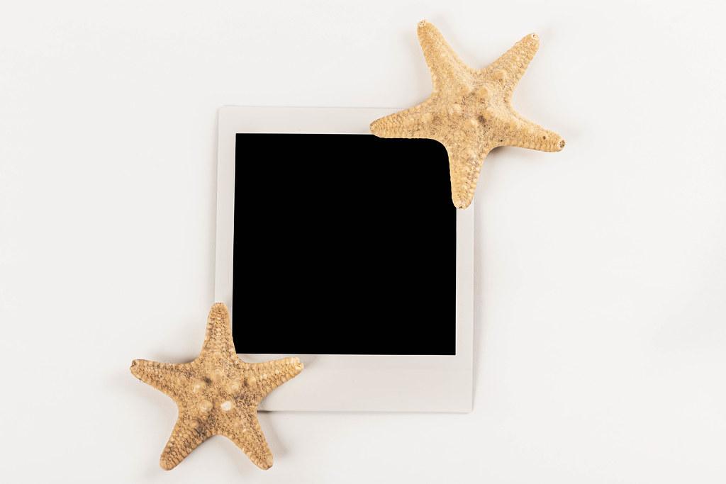Polaroid photo and two starfishes on white