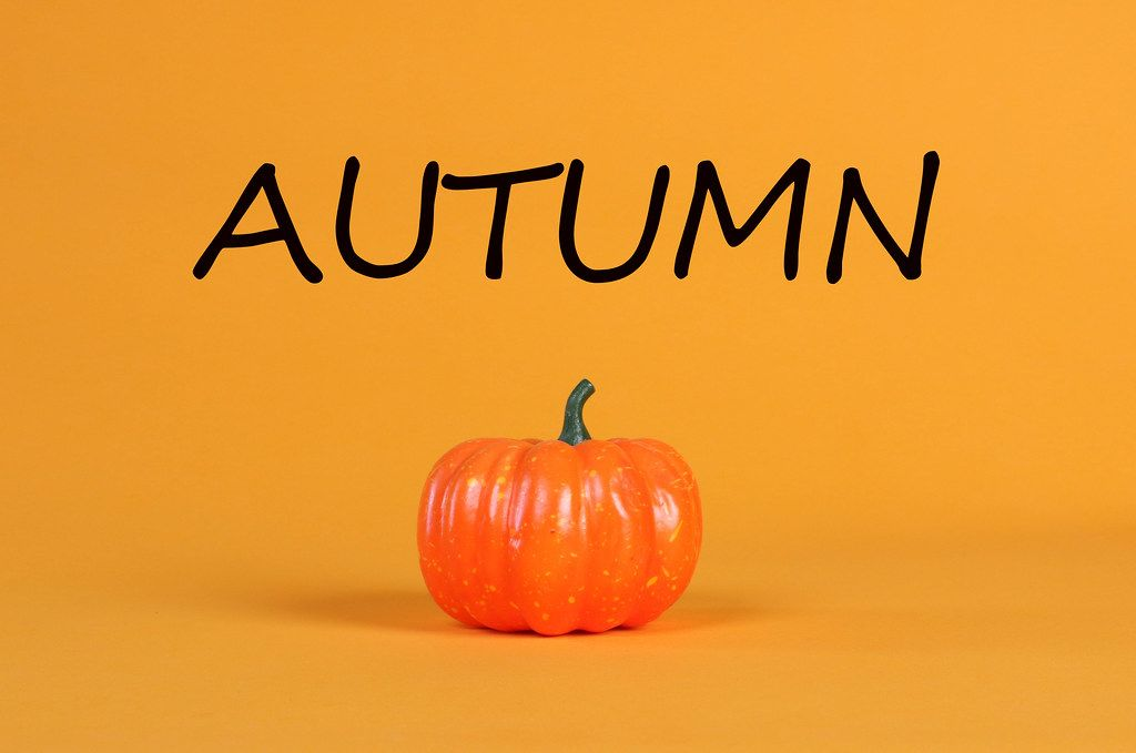 Pumpkin with Autumn text on orange background