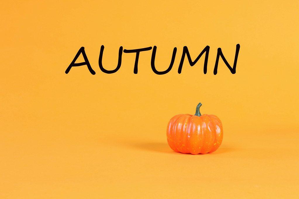 Pumpkin with Autumn text