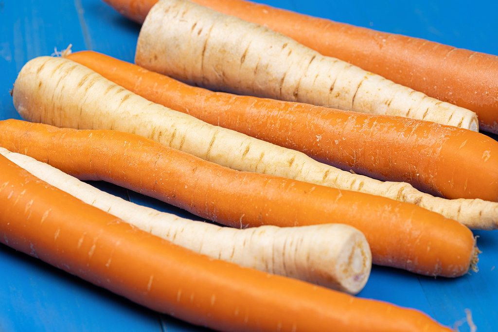 Raw Parsnip and Carrot on the blue wooden background