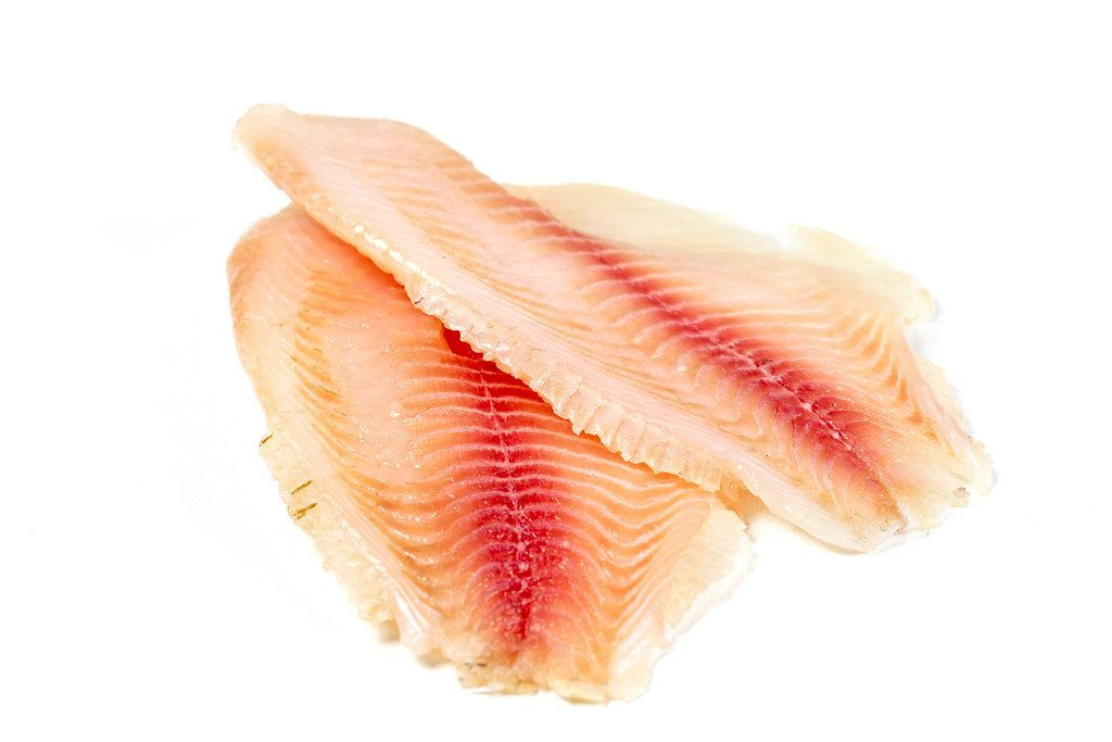 Raw tilapia fillet on white background