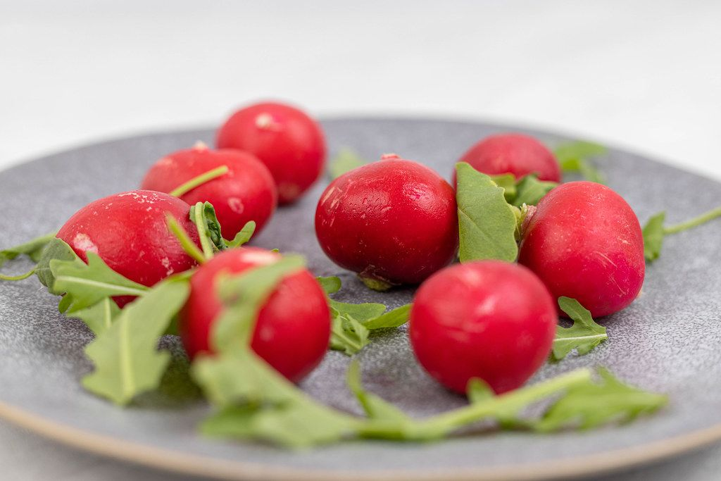 Red Radishes served on the plate