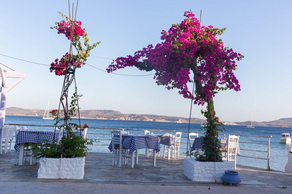 Restaurant mit typischen blau-weißen Tischdecken und Bougainvillea Pflanzen an der Küste auf Milos