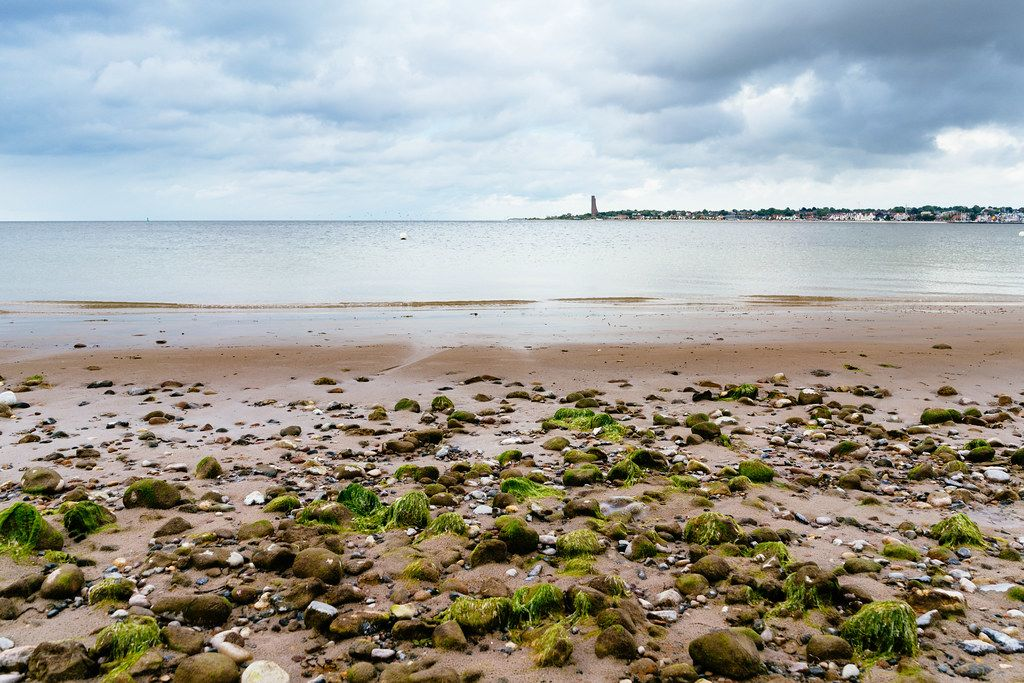 Rocks covered in seaweed on the beach with panorama of Kiel
