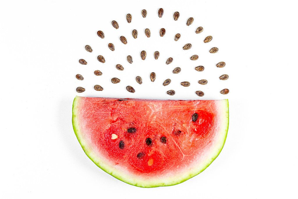 Semicircle of ripe red watermelon and seeds on white background