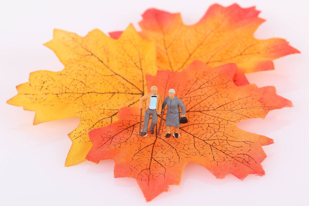 Senior couple with autumn leaf