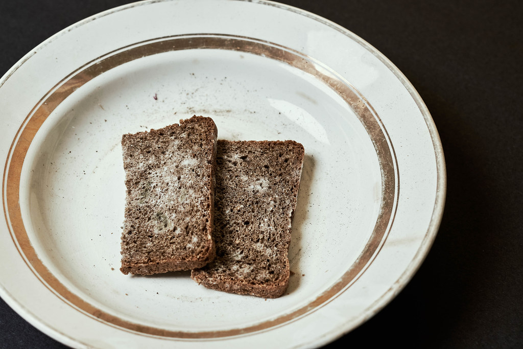 Slices of moldy bread