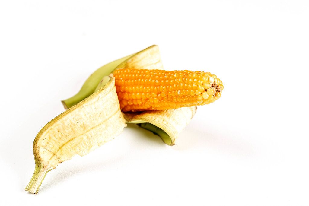 Small head of corn in banana peel on white