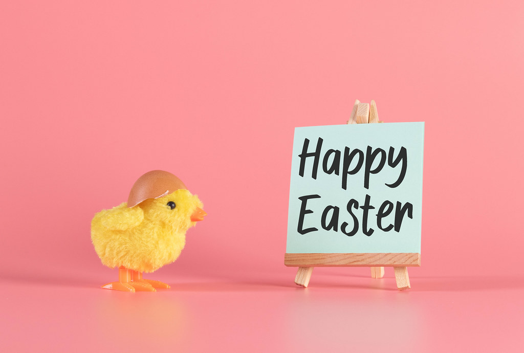Small yellow chicken with Happy Easter text on pink bakcgound