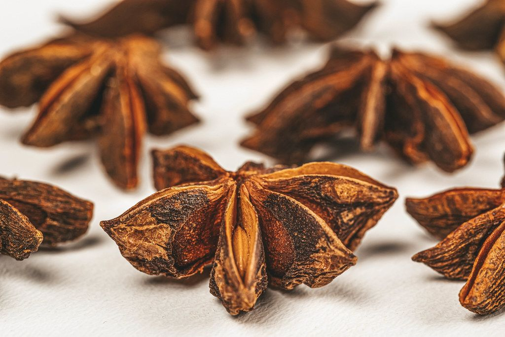 Spices of star anise close up