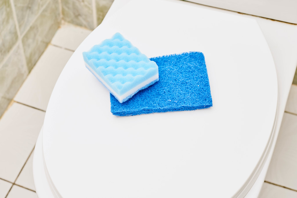 Sponges on the toilet seat cover