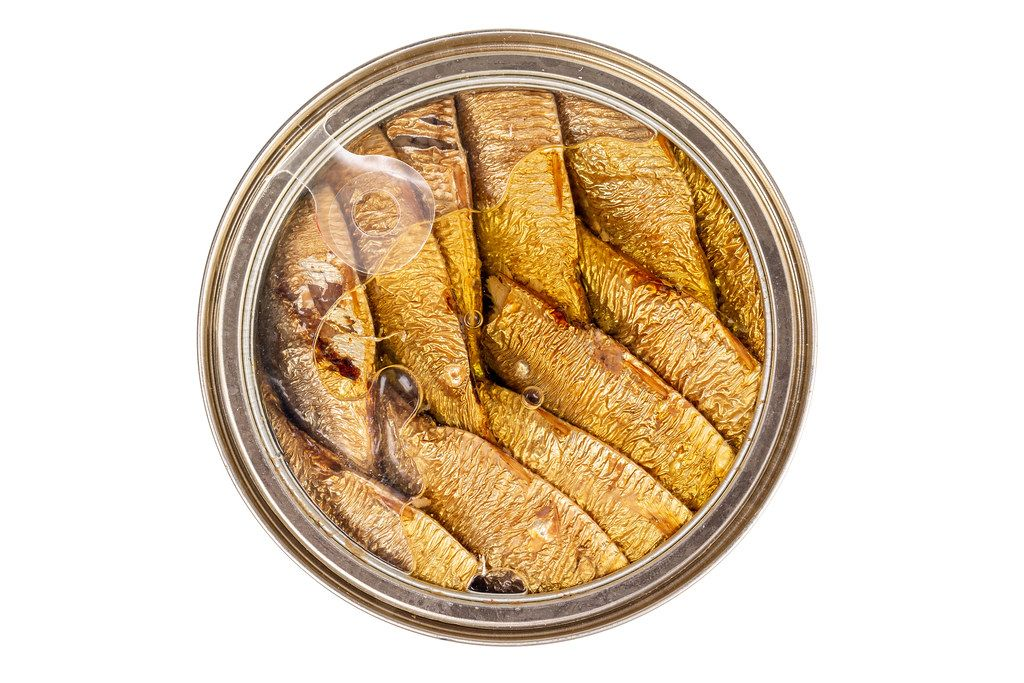 Sprats fish in a metal jar on a white background, top view