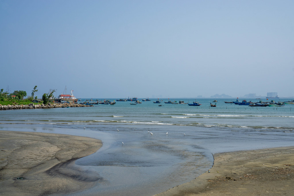 Stork Birds on a Beach with Fishing Boats in the Background in the Harbour of Da Nang, Vietnam