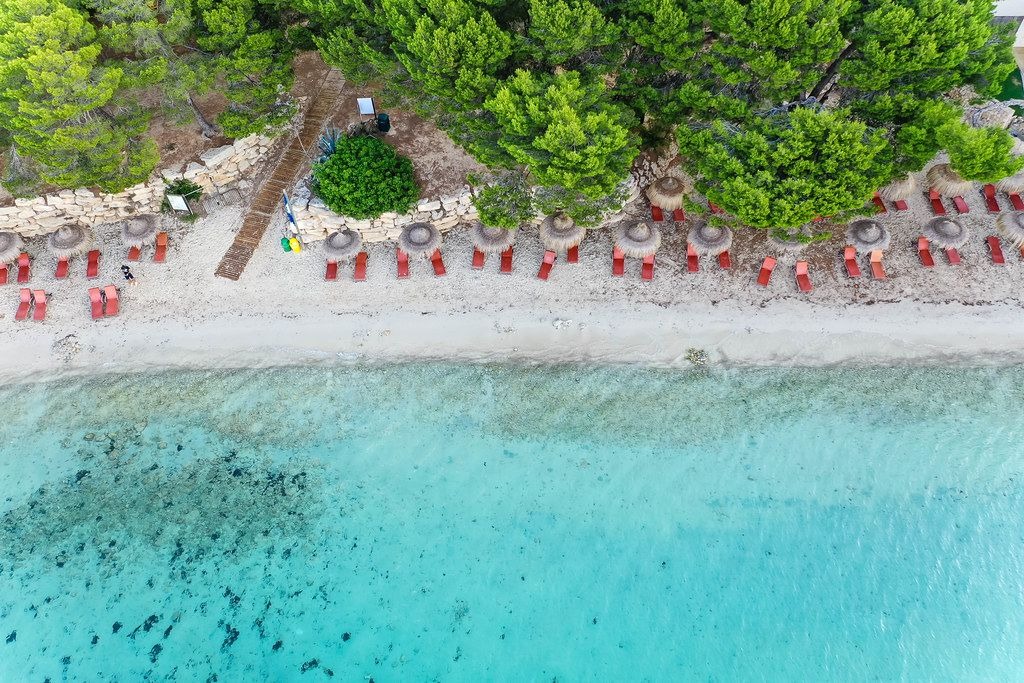 Stunning beach with Mediterranean pine trees, sun beds and Hawaii-style parasols. Playa de Formentor
