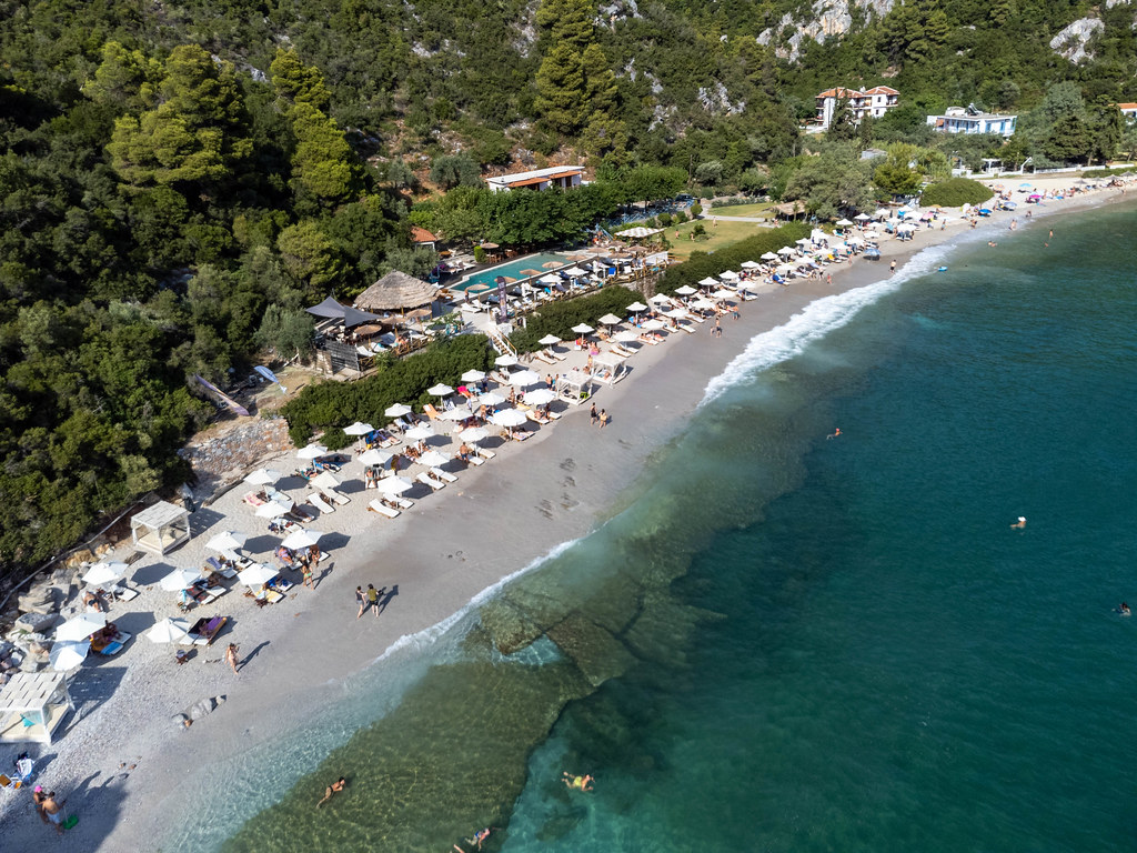 Summer holiday in Greece: Limnonari beach on Skopelos with pine trees and emerald waters