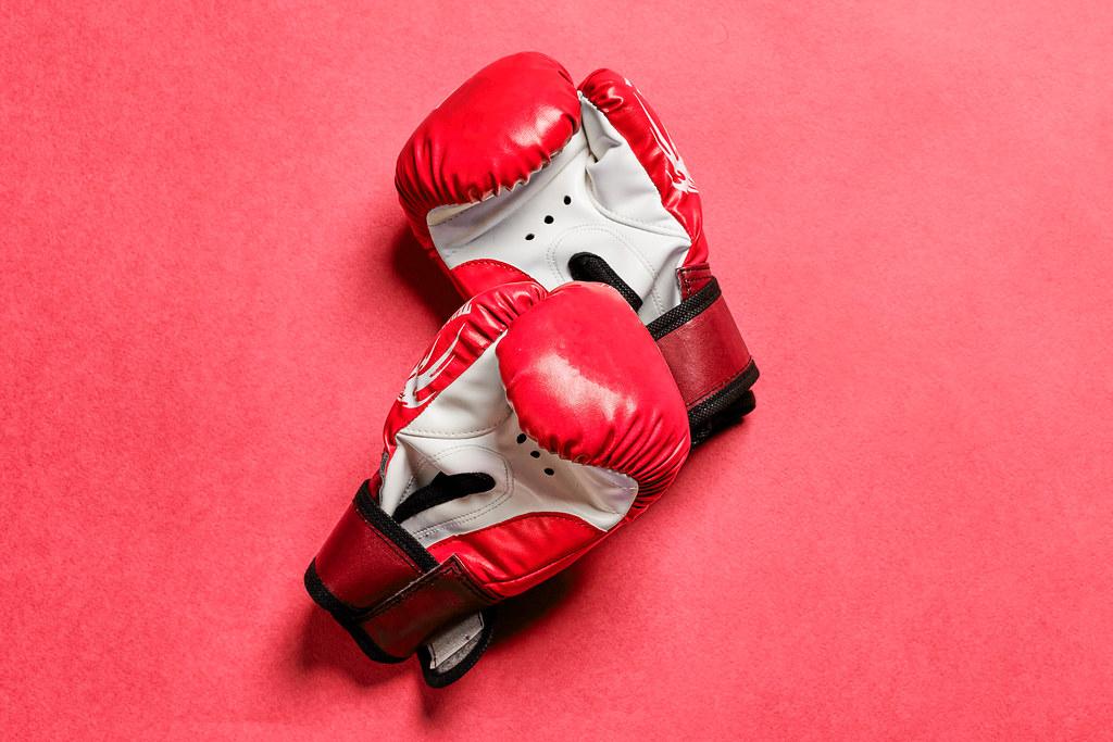 Taekwondo sparring gloves
