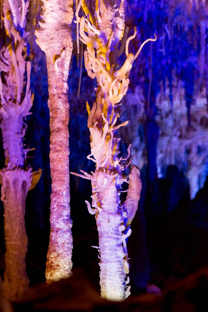 The eccentric stalactites, resembling a fishhook, of Cuevas del Hams, Porto Cristo, Mallorca