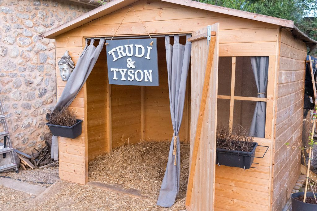 The home of Trudi and Tyson with windows, curtains and hay. Pig's bed at Villa Vegana, Selva, Mallorca