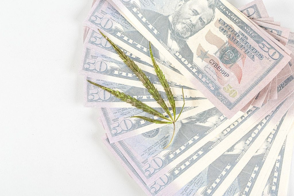 Top view, cannabis leaf on a lot of money on white background