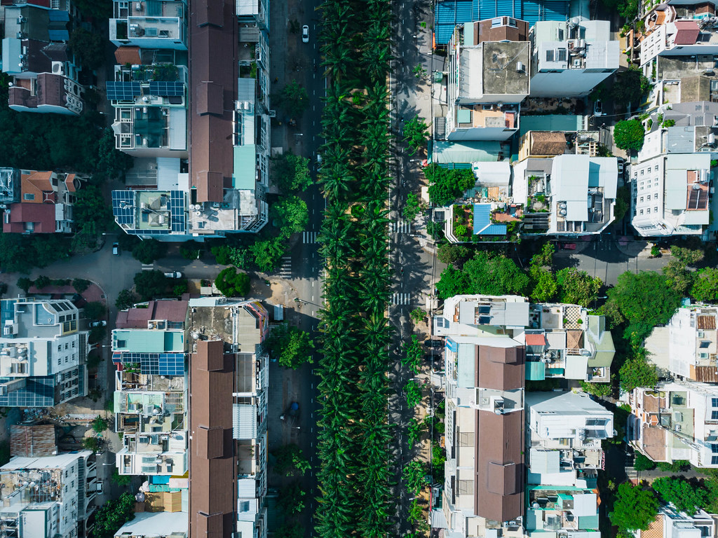 Top View Drone Shot of Palm Trees along a Street in a Residential Area with Alleys and Houses in District 8 in Ho Chi Minh City, Vietnam