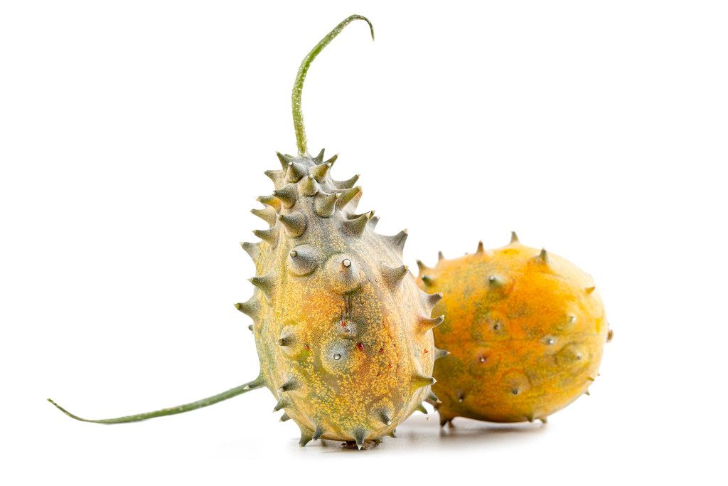 Two fresh whole kiwano, african cucumber on white background