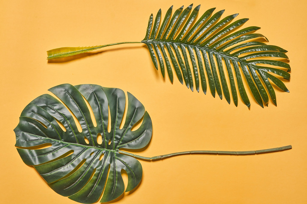 Two large leaves of palm trees on orange background