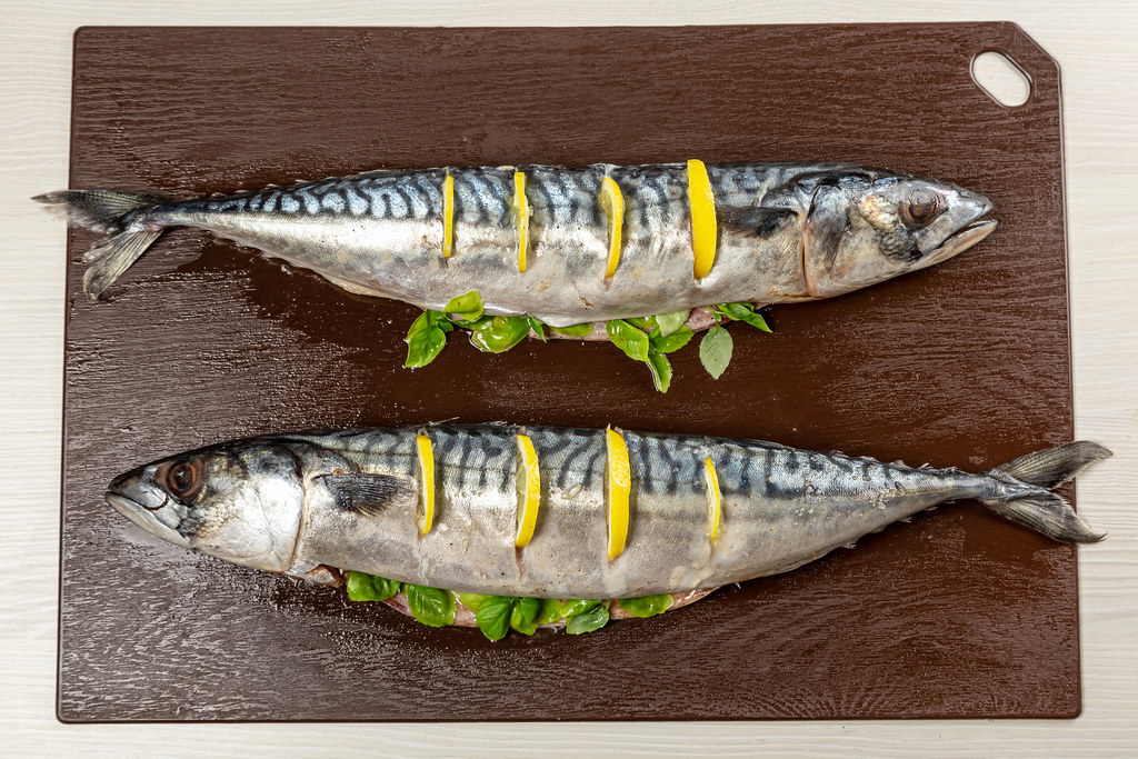 Two raw mackerel fish on a cutting board, top view