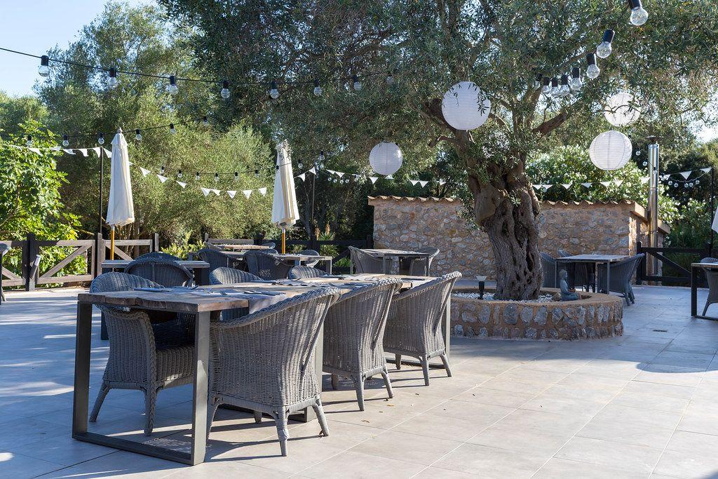 Villa Vegana restaurant open air terrace in Selva, Mallorca. Tables under the olive tree