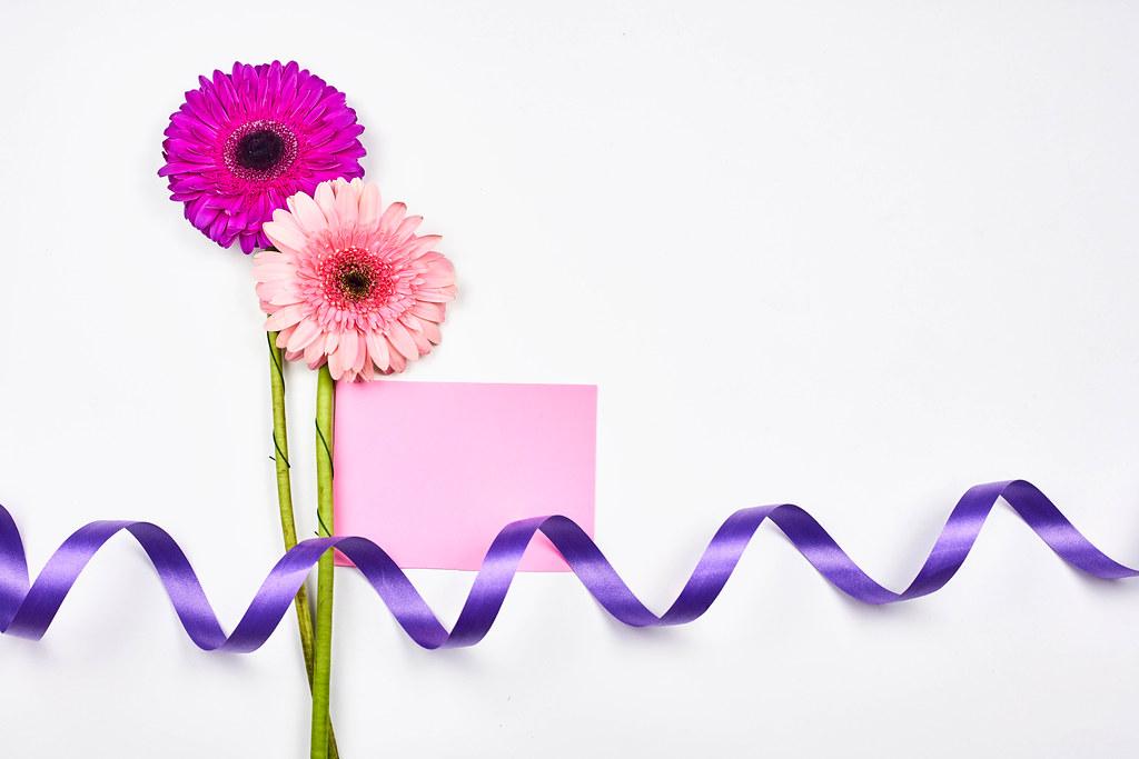 Weißer Hintergrund mit rosa Blumen, lila Schleife und rosa Karte: Platz für eine romantische Nachricht