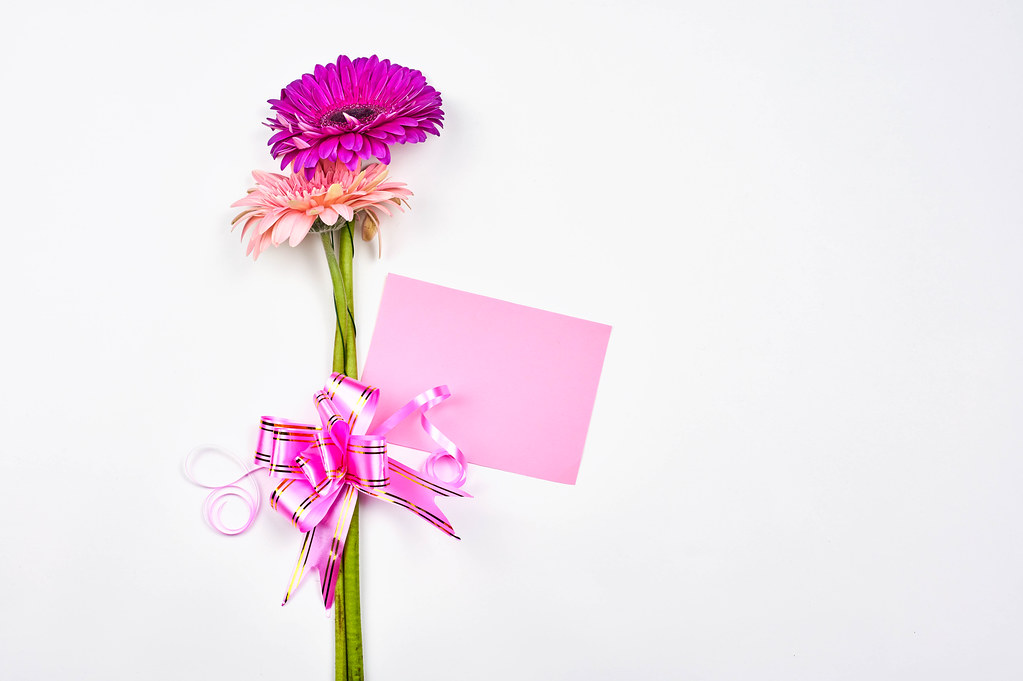 White background with pink flowers, pink ribbon and pink card: space for a romantic message