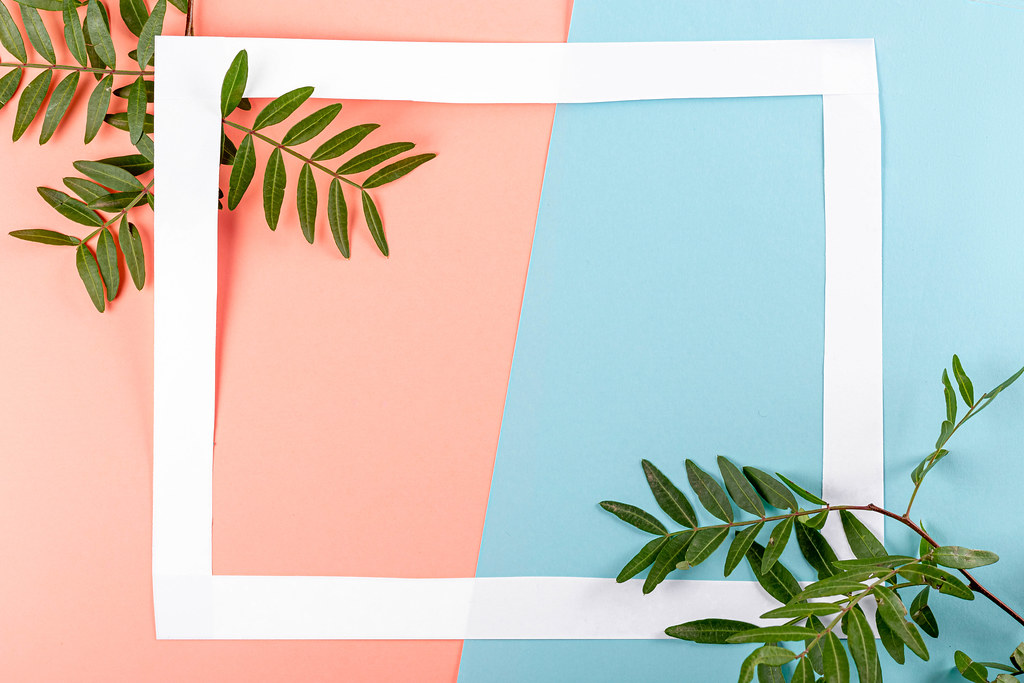 White frame on pink-blue background with green leaves