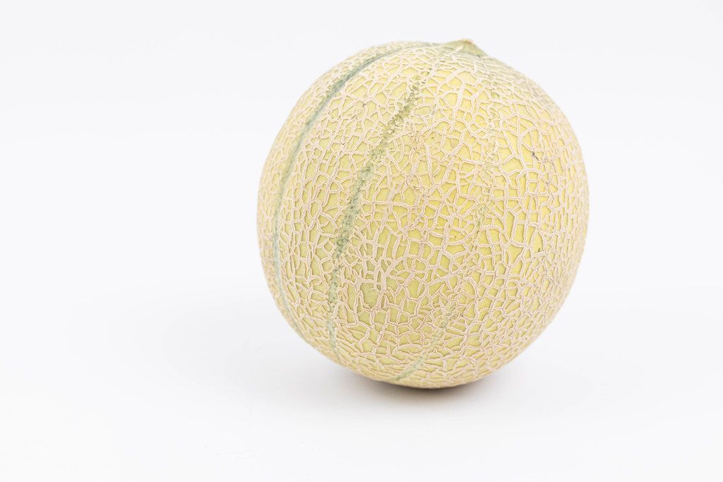 Whole Melon isolated above white background