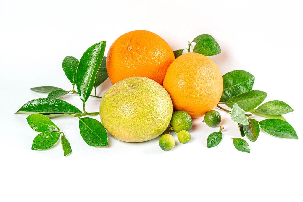 Whole ripe citrus fruits with branches