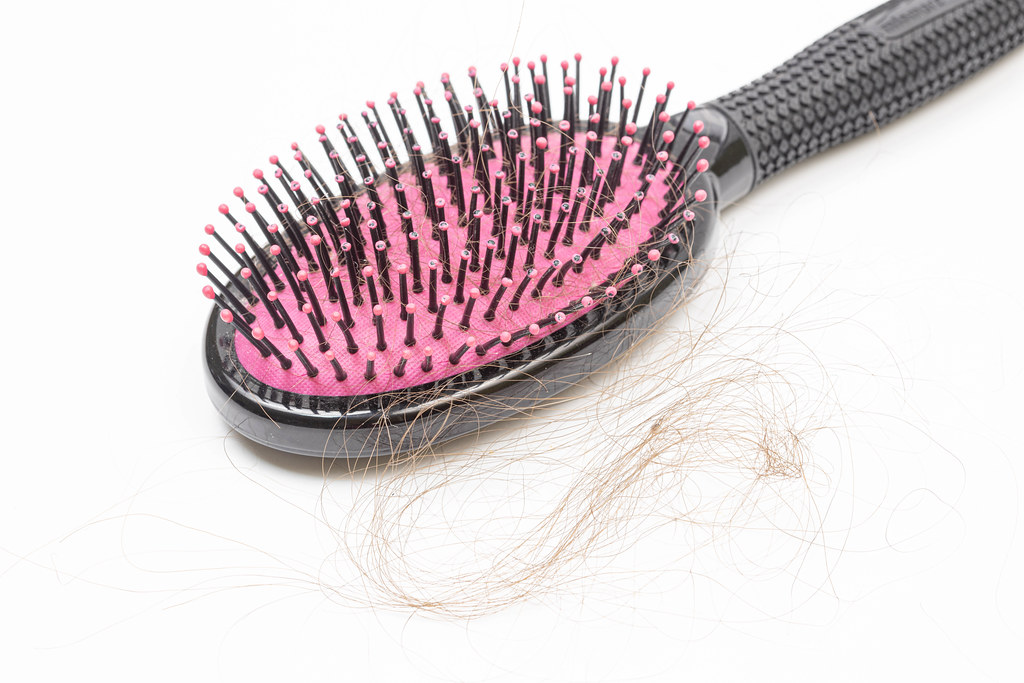 Woman Brush with Hair on it. Hair loss disease