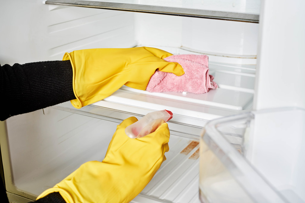 Woman in protective gloves cleaning refrigerator