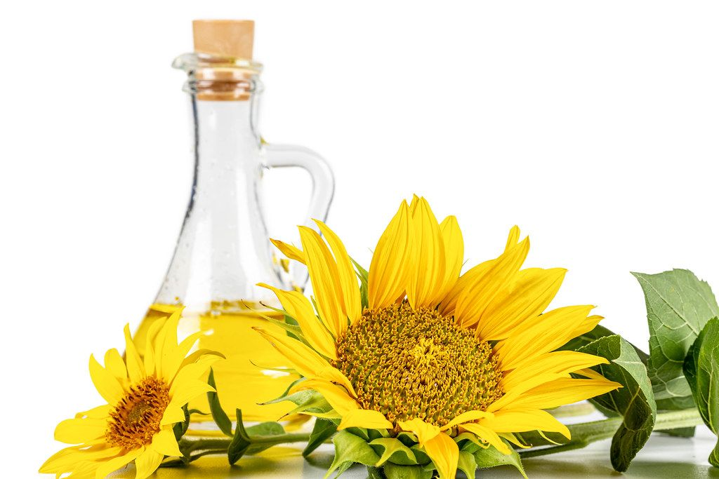 Yellow sunflower flowers and a bottle of sunflower oil
