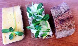 """Green"" sandwiches"