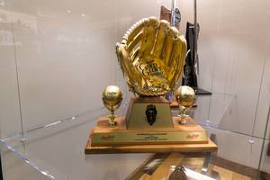 1987 Rawlings Gold Glove Award - Wrigley Field, Chicago