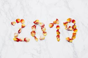2019 year written with flowers. Rose petals on marble background .