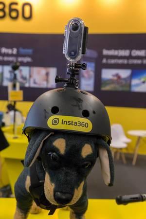 360 Grad Kamera von Insta360 auf einem Plüsch Hund mit Action Helm montiert