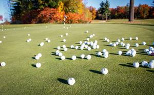 A bunch of golfballs on the putting green on a golf course at a sunny day