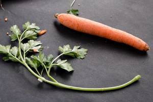 A carrot and parsley in dark background