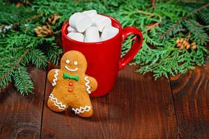 A Cup of cocoa with marshmallows and gingerbread man on a wooden table with Christmas tree branches