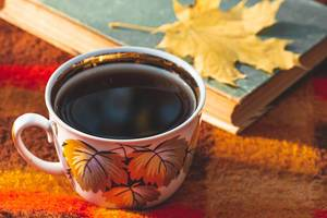 A Cup of tea with a book and a yellow maple leaf on a red plaid (Flip 2019)