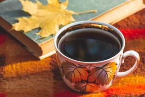 A Cup of tea with a book and a yellow maple leaf on a red plaid